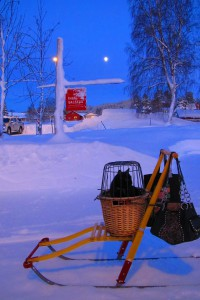 Frøya i måneskinn