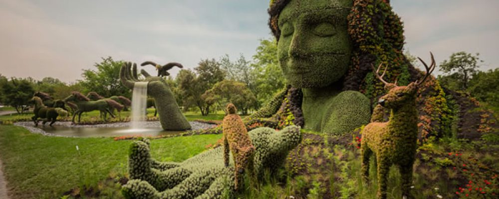 https://ingadalsegg.com/wp-content/uploads/2019/05/Amazing-Garden-Plant-Sculptures-You-Would-Love-To-Put-In-Your-Garden-1.jpg